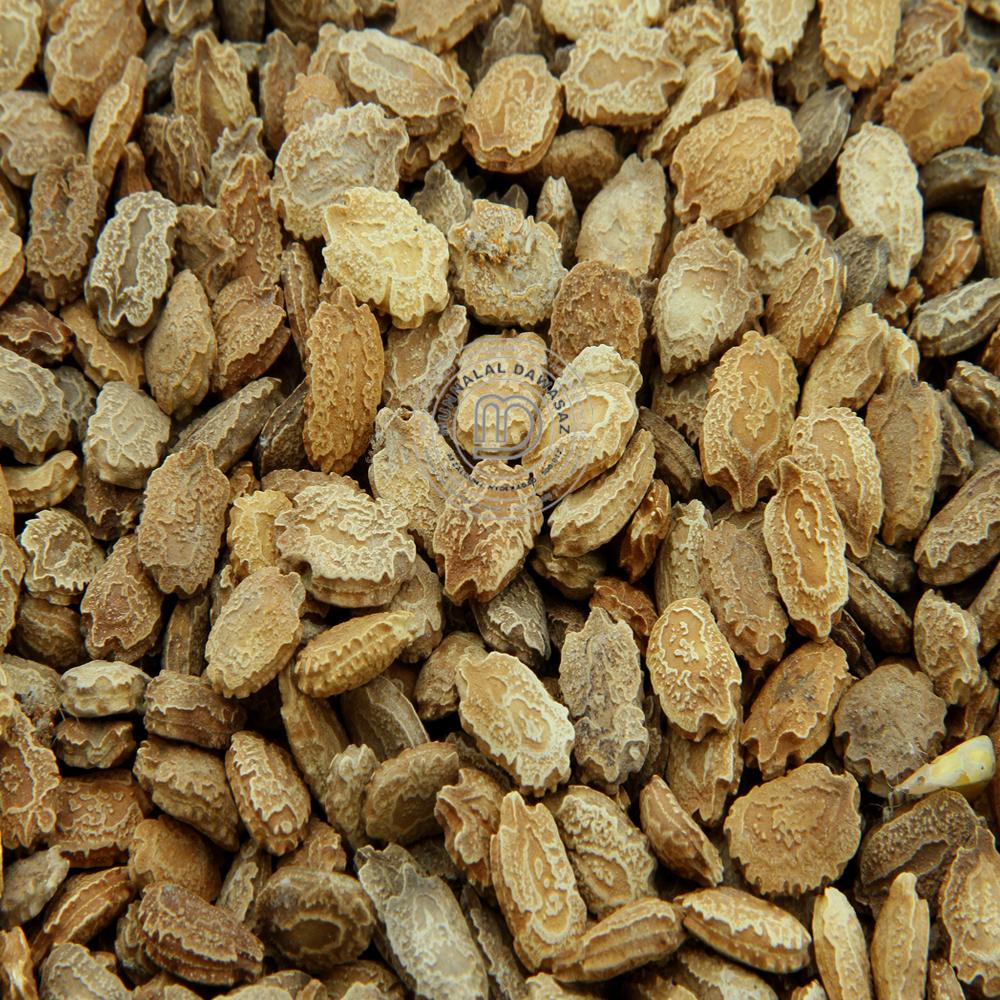 Kerala Seeds