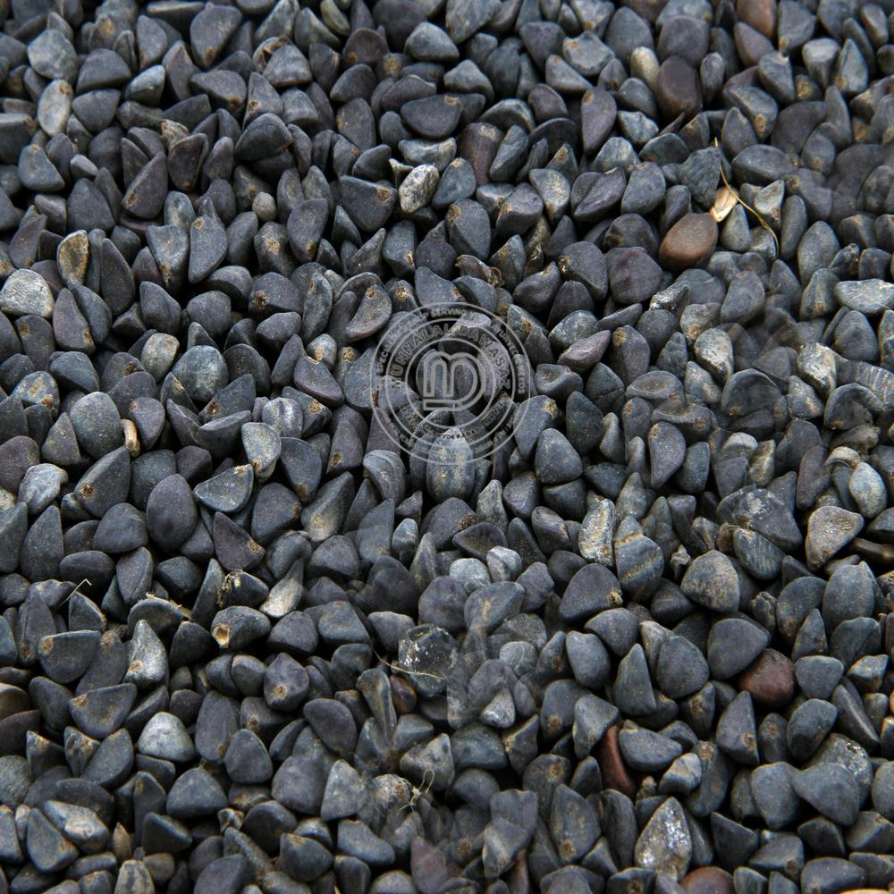 Tal makhana  or mahabeera seeds