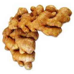 Ginger Sont